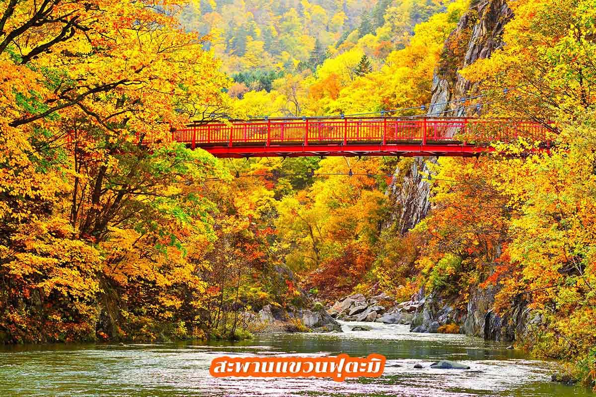 สะพานแขวนฟุตะมิ
