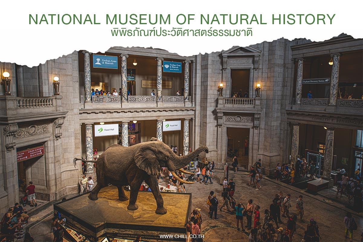 พิพิธภัณฑ์ประวัติศาสตร์ธรรมชาติ