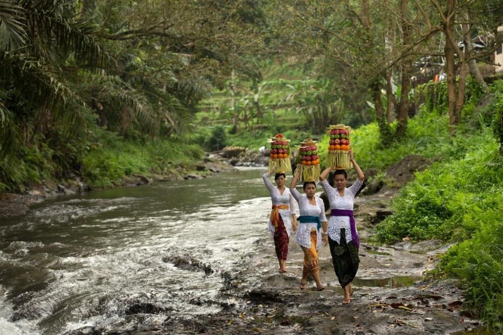 เดอะ ซามายา บาหลี อูบุด (The Samaya Bali UBUD)