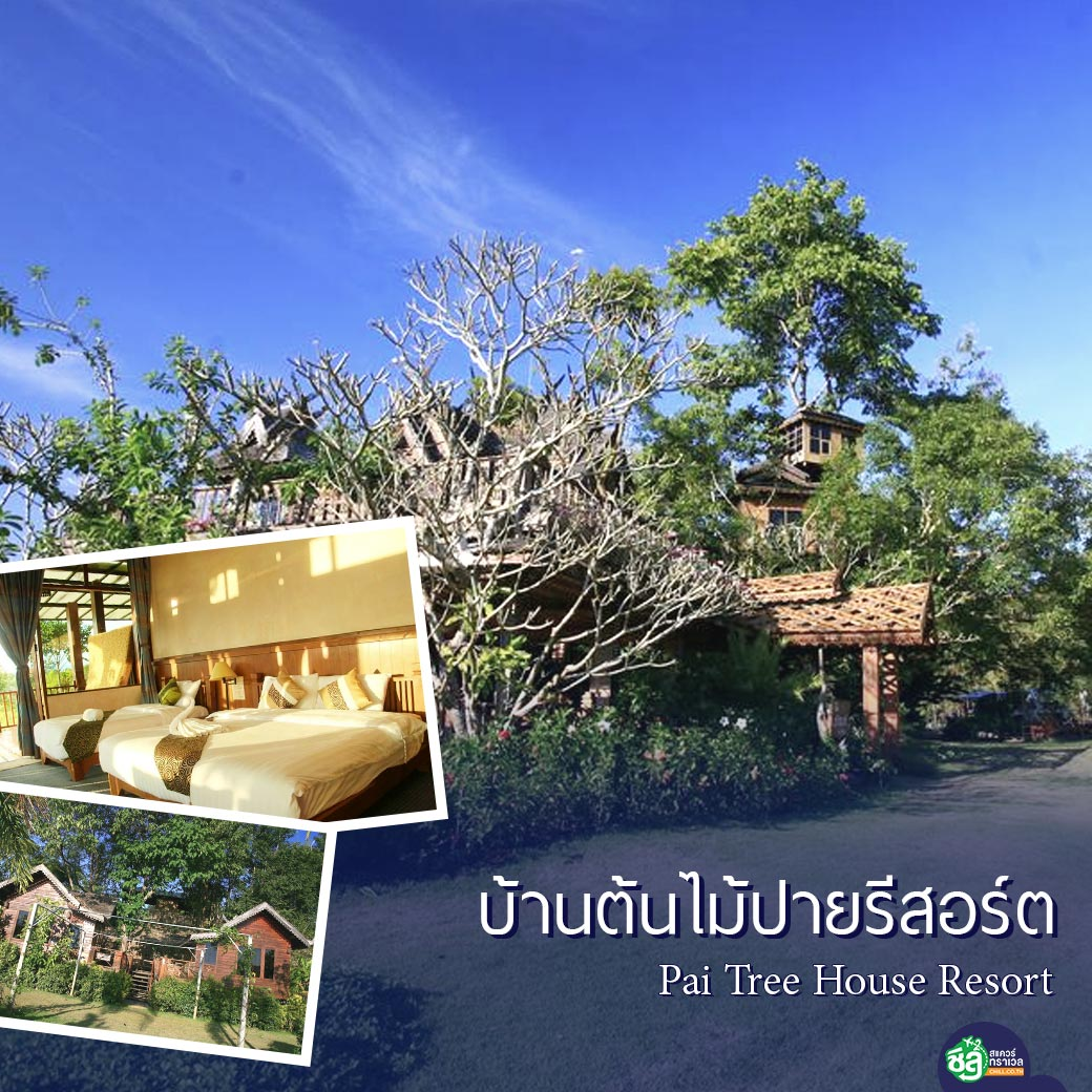 บ้านต้นไม้ปายรีสอร์ต