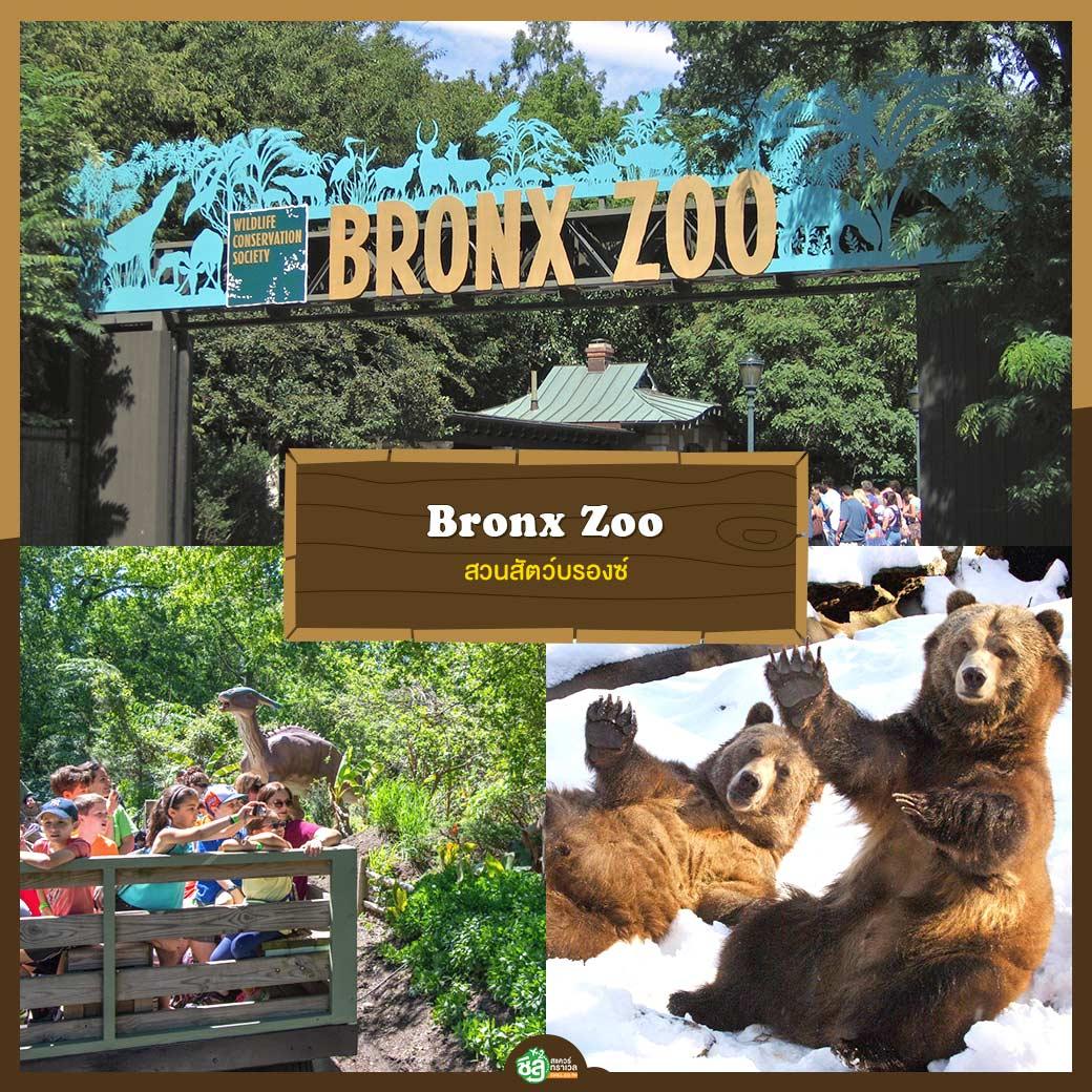 สวนสัตว์บรองซ์