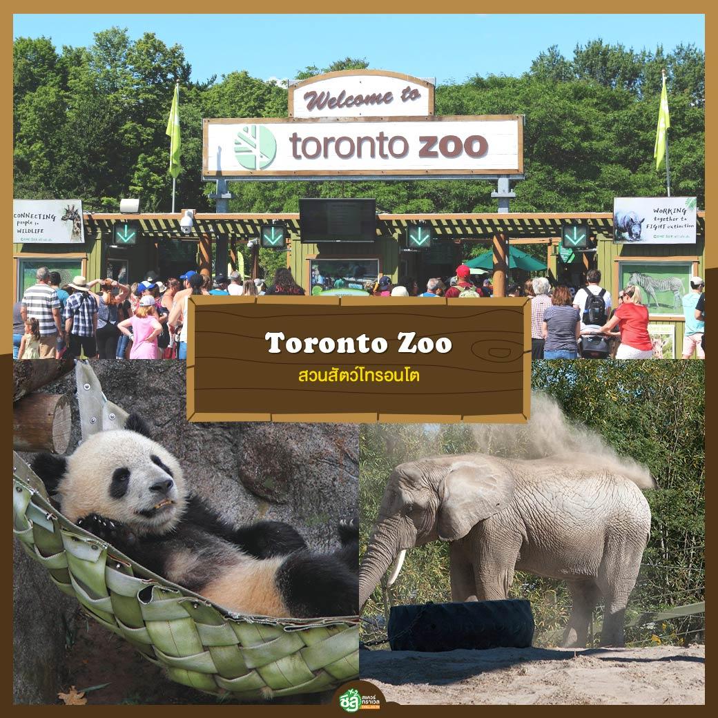 สวนสัตว์โทรอนโต