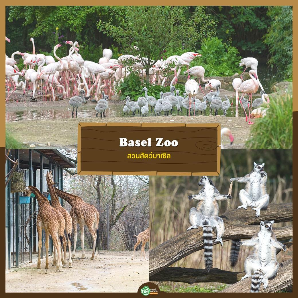 สวนสัตว์บาเซิล