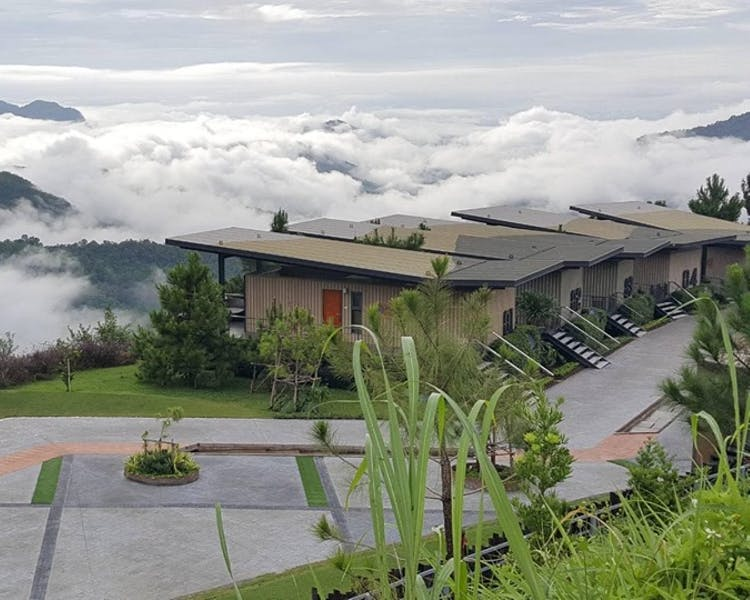 Pino Latte Resort & Cafe