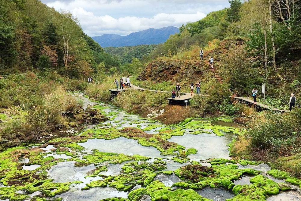 หมู่บ้านมินามิโอกุนิ