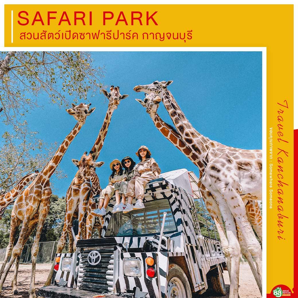 สวนสัตว์เปิดซาฟารีปาร์ค กาญจนบุรี