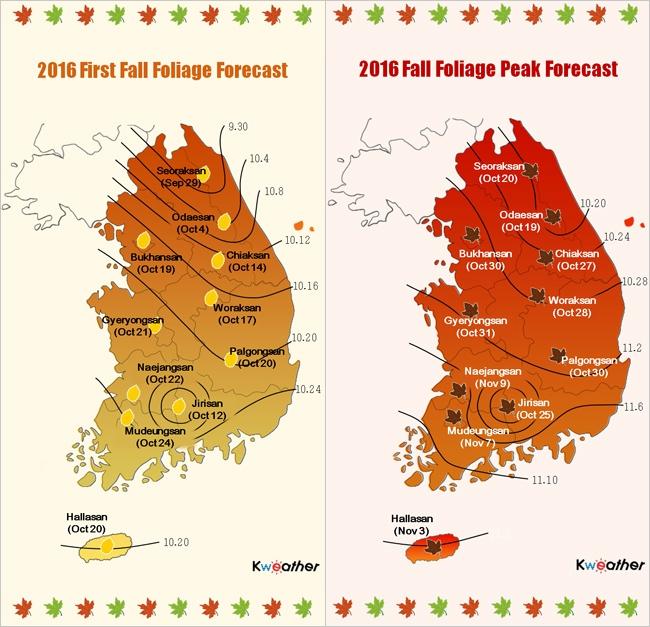 ฤดูใบไม้ร่วง, ใบไม้เปลี่ยนสีเกาหลี
